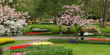 10 Tips to Prepare Your Landscape for Spring